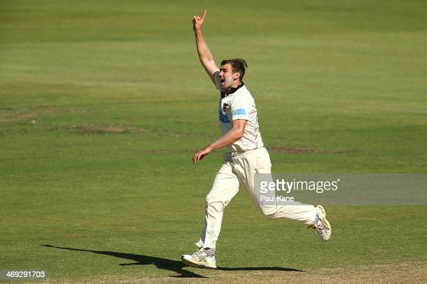 Ryan Duffield of the Warriors celebrates the wicket of Xavier Doherty of the Tigers during day three of the Sheffield Shield match between the...
