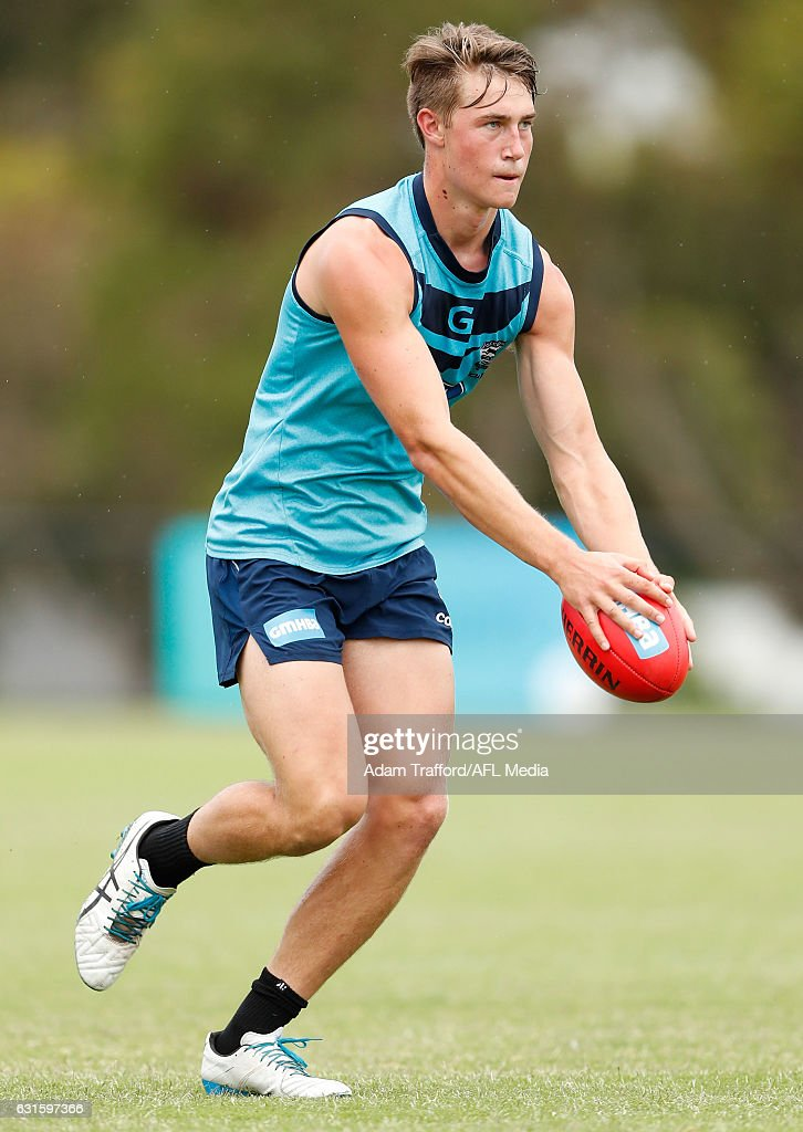 Ryan Gardner of the Cats in action during the Geelong Cats training session at Deakin University, Waurn Ponds on January 13, 2017 in Geelong Australia.