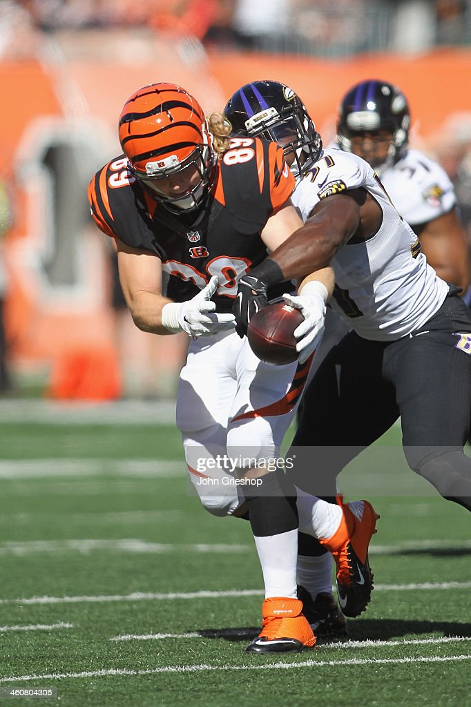 Ryan Hewitt #89 of the Cincinnati Bengals runs the football upfield during the game against the Baltimore Ravens at Paul Brown Stadium on October 26, 2014 in Cincinnati, Ohio. The Bengals defeated the Ravens 27-24.