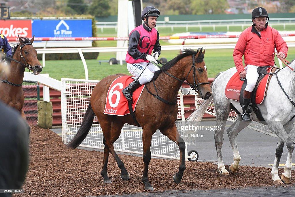 Ryan Maloney returns to the mounting yard on Barthelona after winning The Grand Hotel Frankston Handicap at Ladbrokes Park Hillside Racecourse on...