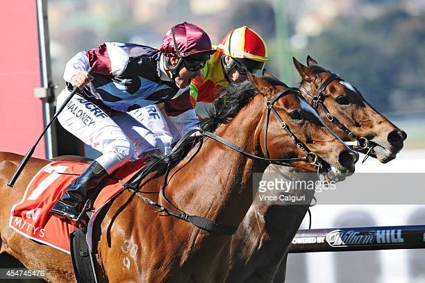 Ryan Maloney riding Angelic Light defeats Craig Newitt riding Lankan Rupee in Race 5 the Mitty's McEwan Stakes during Melbourne Racing at Moonee...
