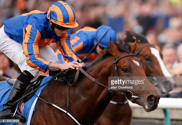 Ryan Moore riding Chruchill win The Dubai Dewhurst from Lancaster Bomber at Newmarket Racecourse on October 8 2016 in Newmarket England