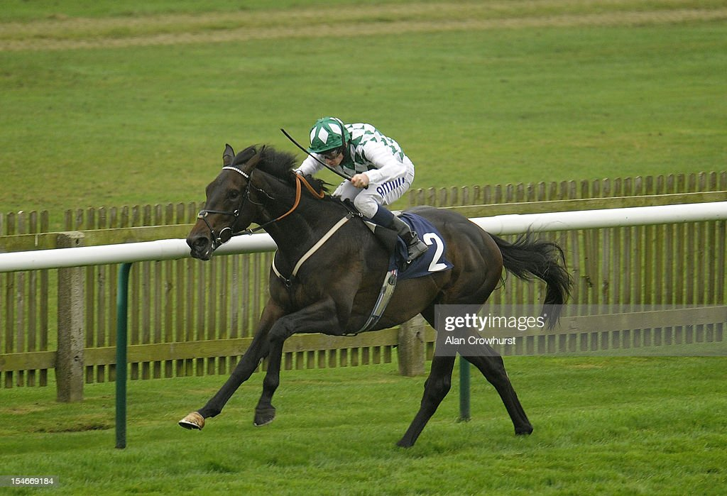 Ryan Moore riding Crop Report win The British Stallion Stued EBF TBA Maiden Stakes at Newmarket racecourse on October 24, 2012 in Newmarket, England.