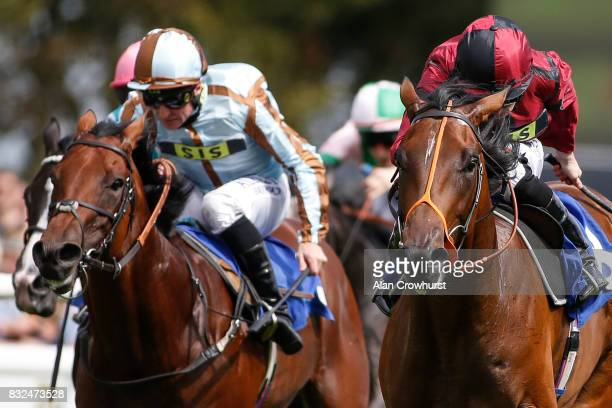 Ryan Moore riding Rogue win The British EBF Molson Coors Novice Stakes at Salisbury racecourse on August 16 2017 in Salisbury England