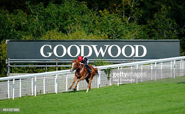 Ryan Moore riding Soviet Courage win The Goodwood Racehorse Owners Group Maiden Stakes at Goodwood racecourse on September 02 2014 in Chichester...