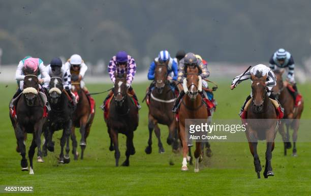 Ryan Moore riding Stomachion win The ladbrokes Mallard Stakes at Doncaster racecourse on September 12 2014 in Doncaster England