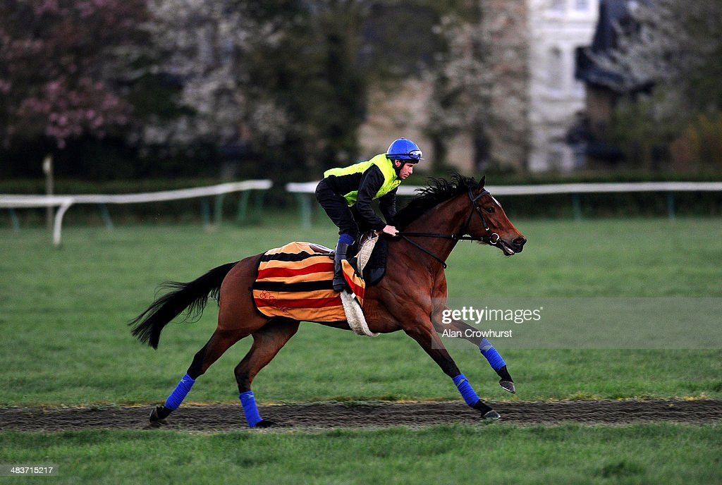 Ryan Powell riding Lucky Kristale on Long Hill Gallop prior to running in the 1000 Guineas in Newmarket on April 10, 2014 in Lingfield, England.