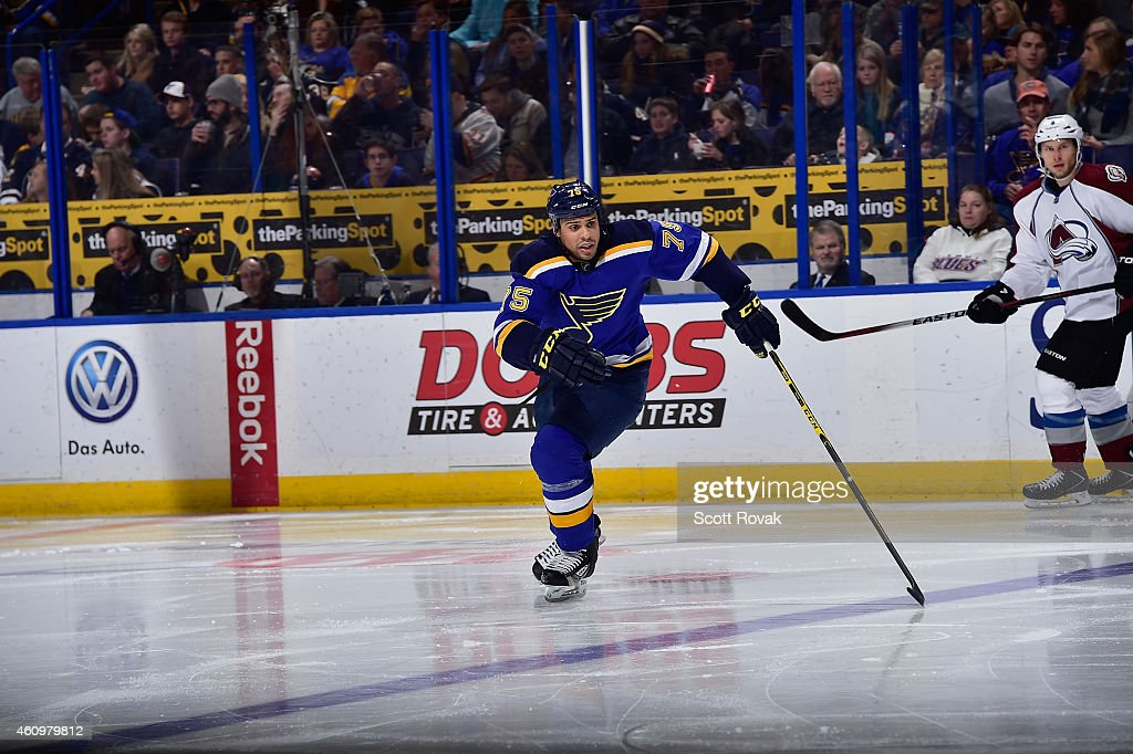Ryan Reaves of the St Louis Blues skates against the Colorado Avalanche on December 29 2014 at Scottrade Center in St Louis Missouri