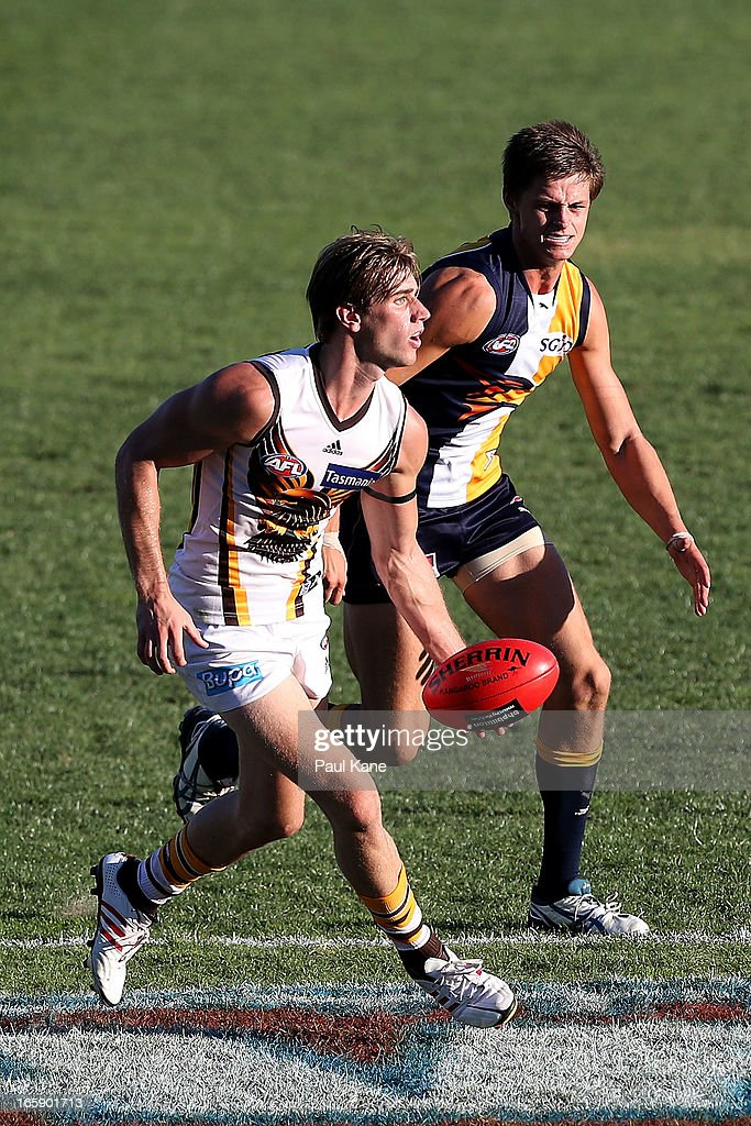 Ryan Schoenmakers of the Hawks looks to handball during the round two AFL match between the West Coast Eagles and the Hawthorn Hawks at Patersons Stadium on April 7, 2013 in Perth, Australia.