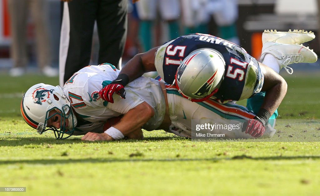 <a gi-track='captionPersonalityLinkClicked' href=/galleries/search?phrase=Ryan+Tannehill&family=editorial&specificpeople=5573174 ng-click='$event.stopPropagation()'>Ryan Tannehill</a> #17 of the Miami Dolphins is sacked by <a gi-track='captionPersonalityLinkClicked' href=/galleries/search?phrase=Jerod+Mayo&family=editorial&specificpeople=2172698 ng-click='$event.stopPropagation()'>Jerod Mayo</a> #51 of the New England Patriots during a game at Sun Life Stadium on December 2, 2012 in Miami Gardens, Florida.