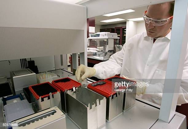 Ryan Wiskirchen a lab technician for Sorenson Genomics sets up a machine to extract DNA from samples of victims of the last December's Indian Ocean...