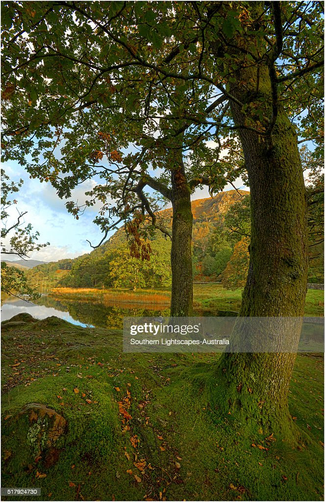 Rydal water, Lakes district, Cumbria, England, United Kingdom