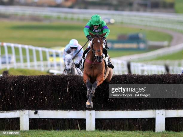 Rydalis ridden by Aidan Coleman wins The Cavalry Handicap Steeple Chase at Leicester Racecourse