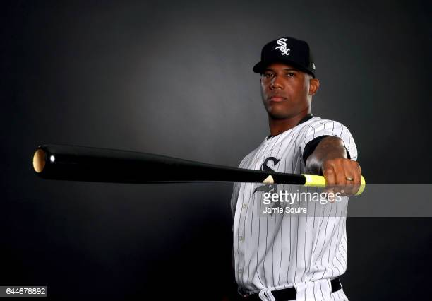 Rymer Liriano of the Chicago White Sox poses on Chicago White Sox Photo Day during Spring Taining on February 23 2017 in Glendale Arizona