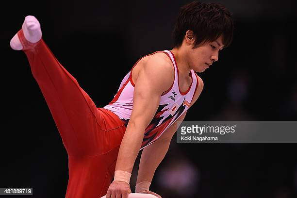 Ryohei Kato of Japan competes in the Pommel Horse of Men's All Around Final during Gymnastics Tokyo World Cup 2014 at Tokyo Metropolitan Gymnasium on...