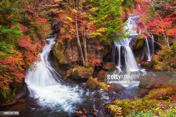 Ryuzu falls of Nikko during autumn