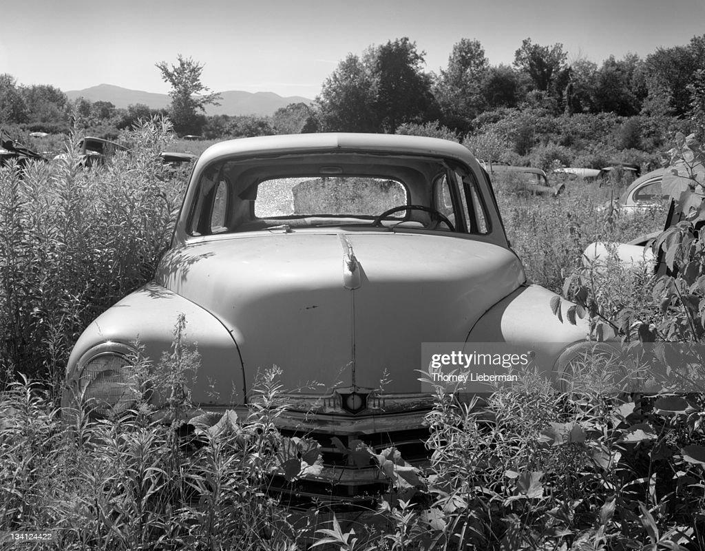 50's Car in Field : Stock Photo