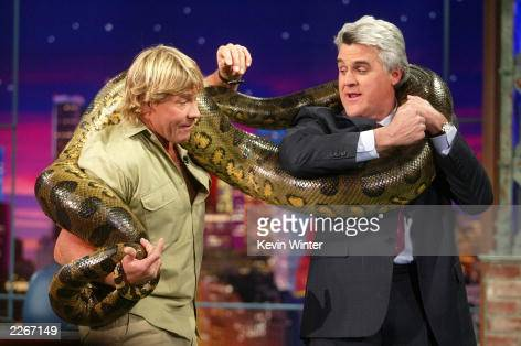 TV's 'Crocodile Hunter' Steve Irwin wraps an anaconda snake around host Jay Leno on 'The Tonight Show with Jay Leno' at the NBC studios February 4...