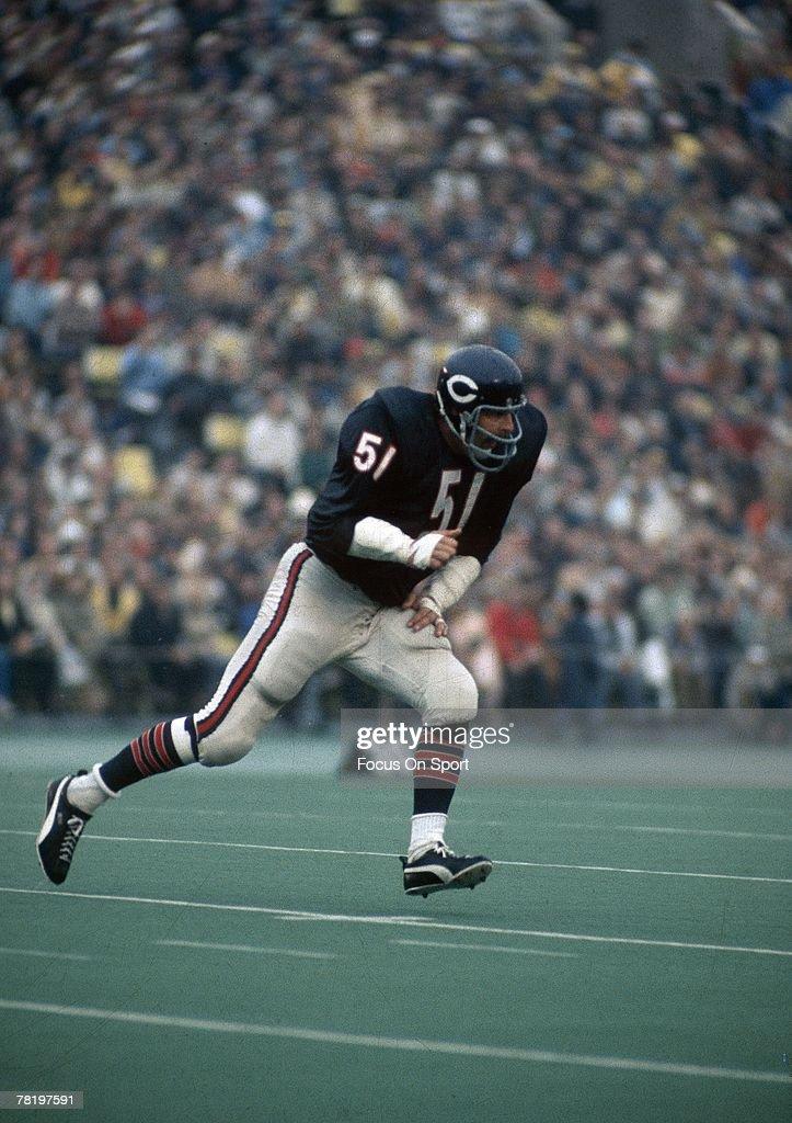 Dick linebacker chicago osos
