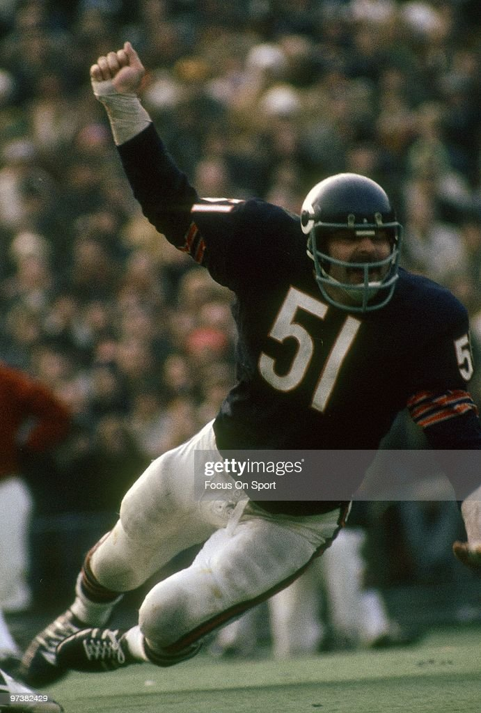 CHICAGO, IL - CIRCA 1970's: Linebacker <a gi-track='captionPersonalityLinkClicked' href=/galleries/search?phrase=Dick+Butkus&family=editorial&specificpeople=809708 ng-click='$event.stopPropagation()'>Dick Butkus</a> #51 of the Chicago Bears in action circa 1970's during an NFL football game at Soldier Field in Chicago, Illinois. Butkus played for the Bears from 1965-73.
