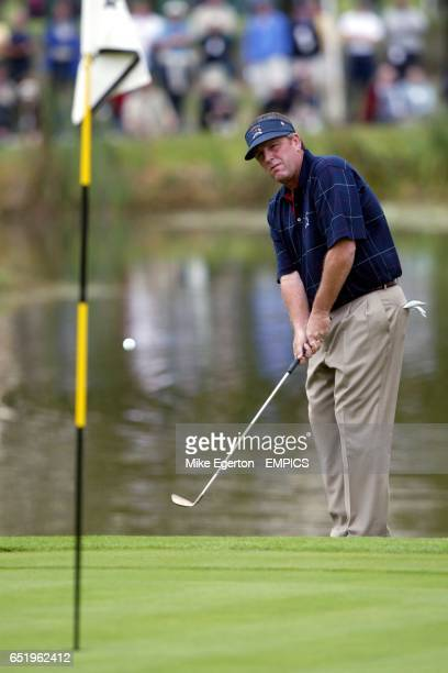USA's Mark Calcavecchia chips onto the green during his match against Europe's Niclas Fasth and Jesper Parnevik