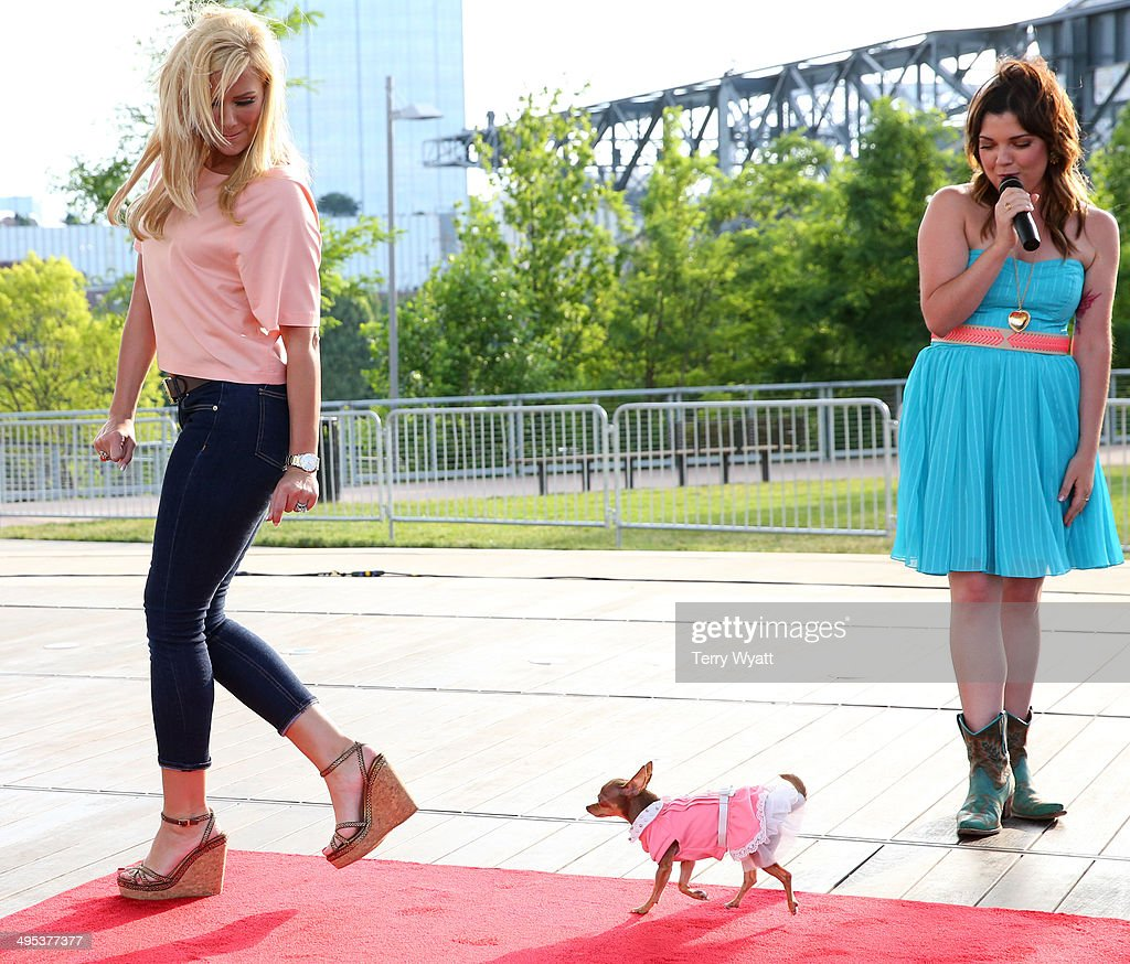 CMT's Samantha Stephens and Allison DeMarcus host the CMT One Country & Dentastix Smile! Party on June 2, 2014 in Nashville, Tennessee.