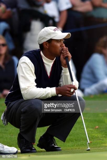 USA's Tiger Woods studies a putt during his match against Europe's Jesper Parnevik