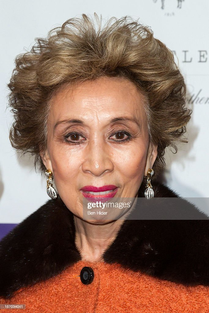 Sachi Liebergesell attends Martina Arroyo Annual Foundation Gala at 583 Park Avenue on November 27, 2012 in New York City.