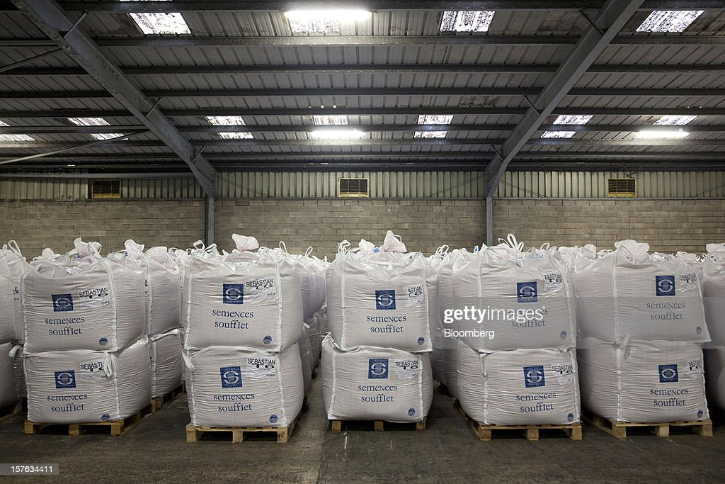 Sacks of barley seed sit in a storage area at the Groupe Soufflet plant in Nogent-sur-Seine, France, on Tuesday, Dec. 4, 2012. European Union corn imports may be the second-highest on record this season after drought parched crops and a surge in wheat exports curbed domestic grain supply. Photographer: Balint Porneczi/Bloomberg via Getty Images