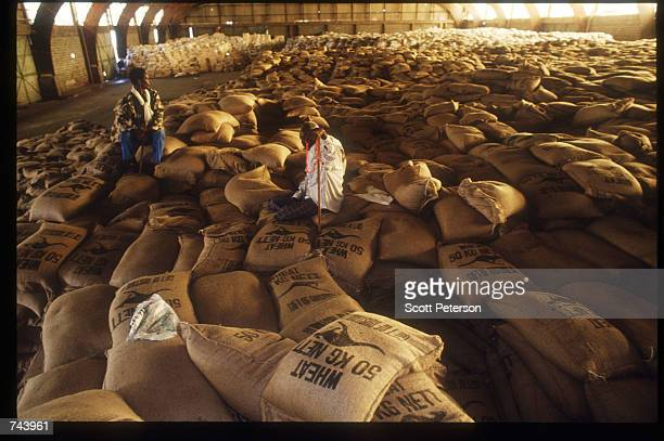 Sacks of rice are stored in a warehouse December 6 1992 in Mogadishu Somalia The convoy of about thirty trucks loaded with rice which left Mogadishu...