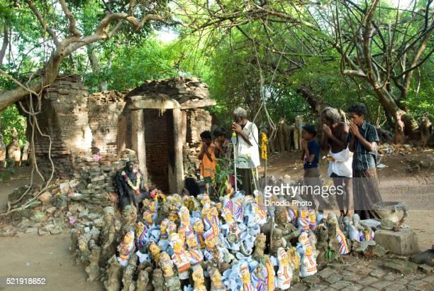 Sacred grove in Tamil Nadu, India