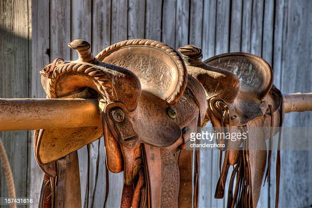 Saddles, two