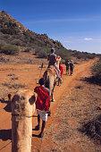 Safari in Samburu National Reserve