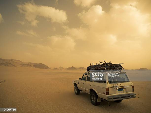 safari in the sandstorm