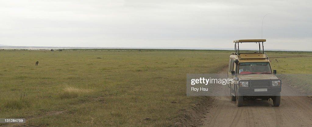 Safari Jeep In serengeti : Stock Photo
