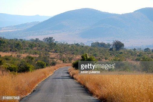 Safari Road at Pilanesberg Game Reserve