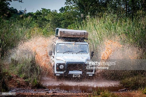 Safari Splash