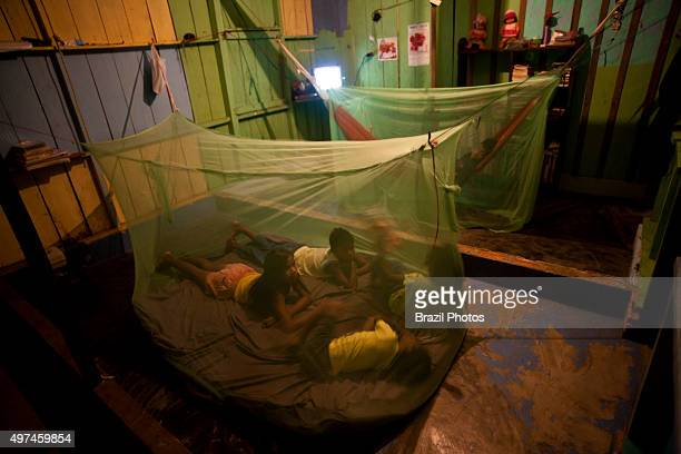 Safety precaution family under mosquito net in Amazon rain forest for avoiding malaria and leishmaniosis endemic diseases in the region Brazil