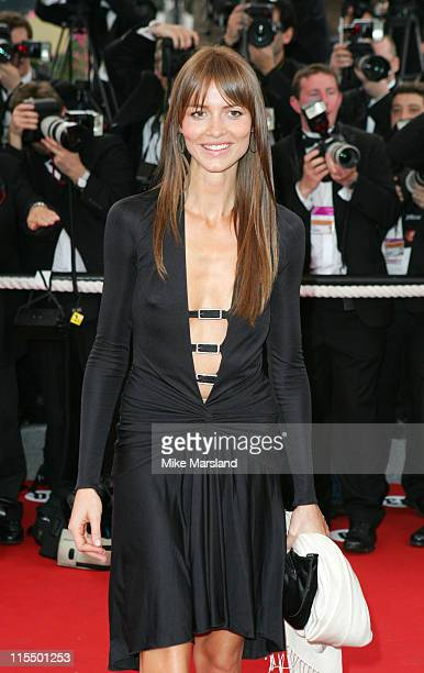 Saffron Burrows during 2004 Cannes Film Festival 'The Bad Education' Opening Night at Palais Du Festival in Cannes France