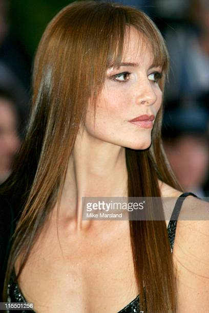 Saffron Burrows during 2004 Cannes Film Festival 'Troy' Premiere at Palais Du Festival in Cannes France