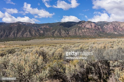 Sagebrush along the US Highway 50 near Scipio Lake, Utah : Stock Photo