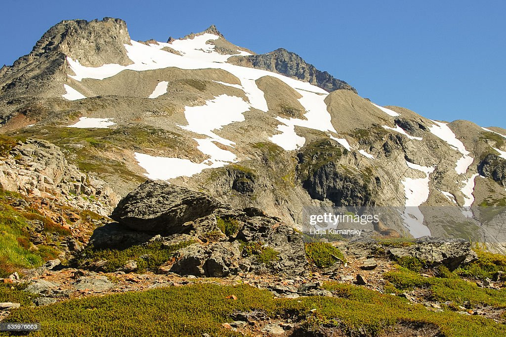 Sahale Mountain and Marmot