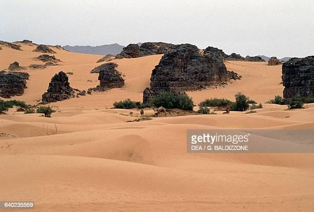 Sahara Desert near Djanet Oasis Algeria