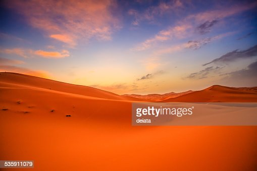 Sahara desert : Stock Photo