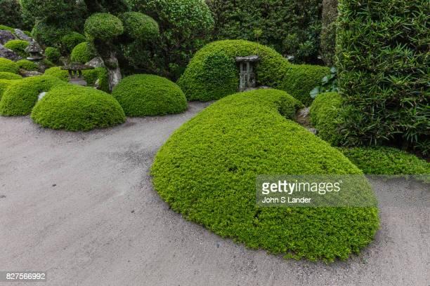 Saigo Kenichiro Garden at Chiran Samurai Village Chiran was home to more than 500 samurai residences during the late Edo period The samurai homes and...