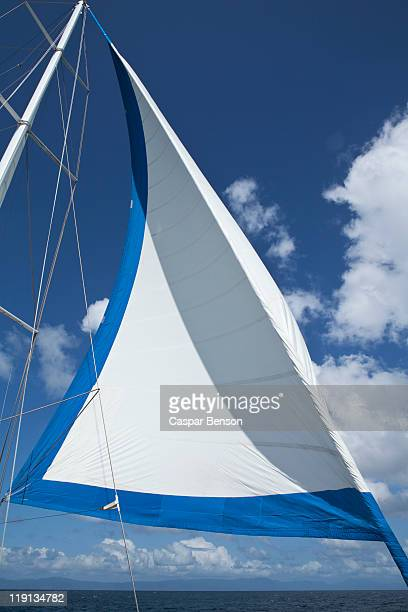 Sail and mast of a yacht