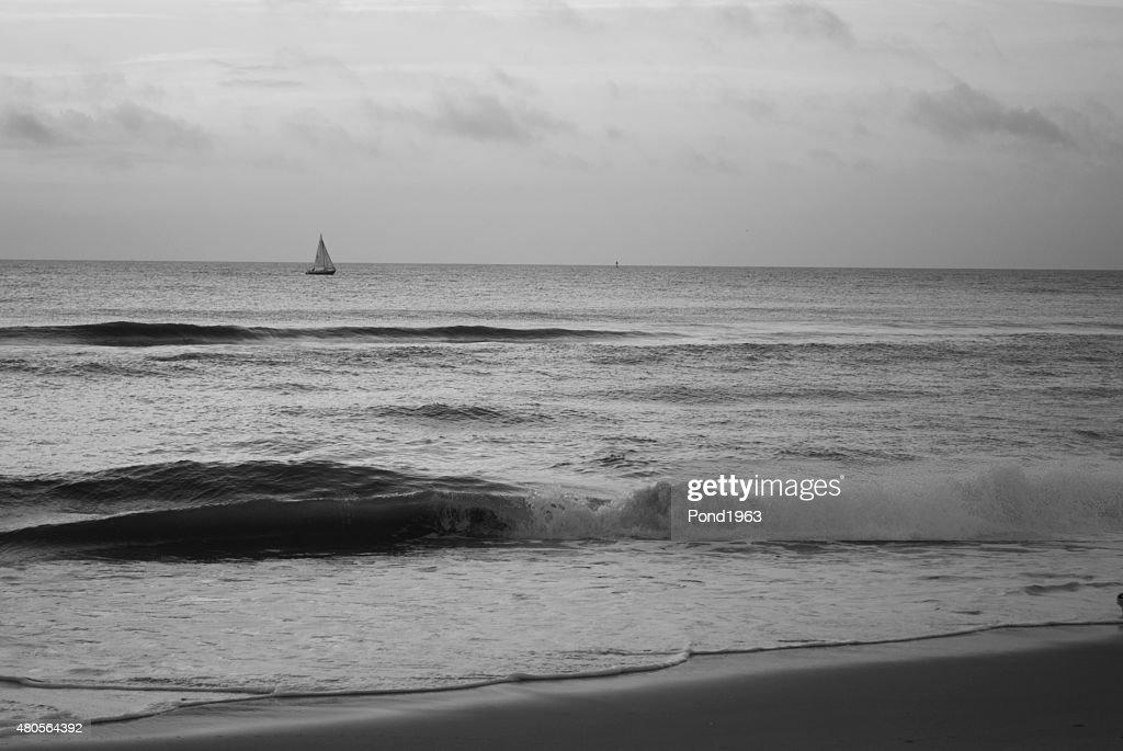 Sailboat at Virginia Beach : Stock Photo
