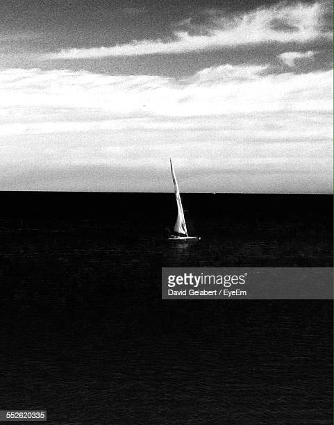 Sailboat In Sea