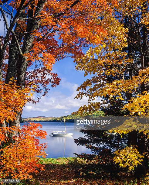 sailboat on lake framed by vibrant autumn foliage