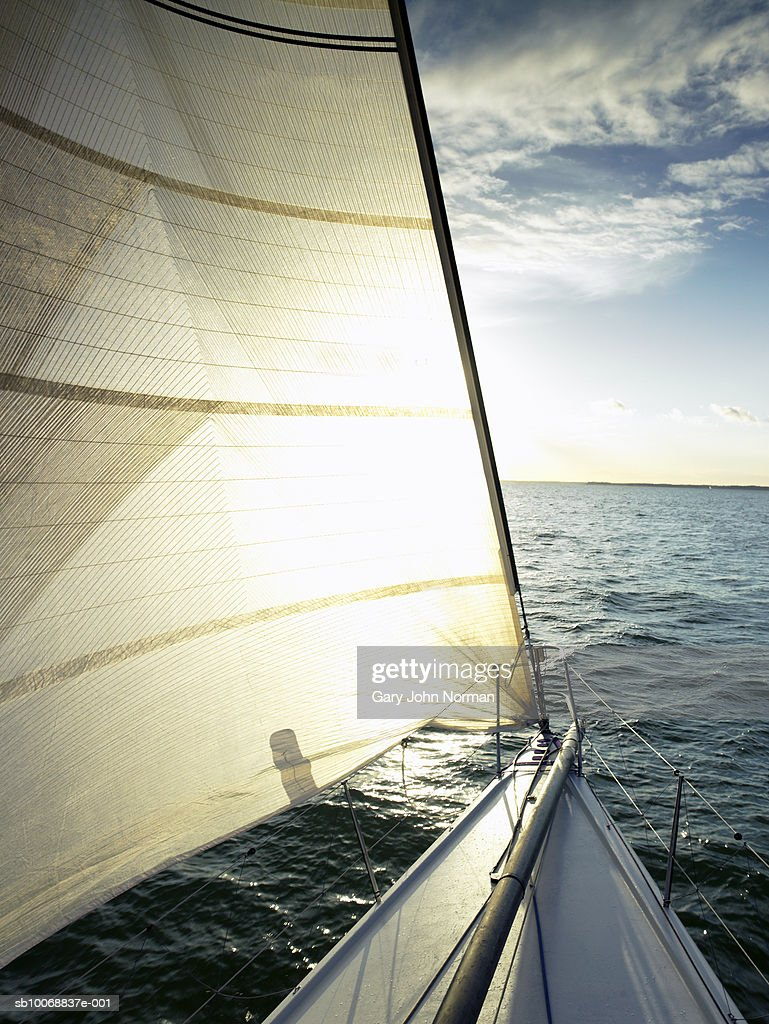 Sailboat on sea, backlit